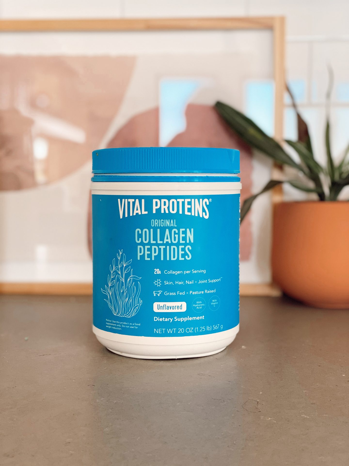 3 PROTEINS COLLAGEN PEPTIDES RESULTS featured by top San Francisco lifestyle blog, Navy Grace