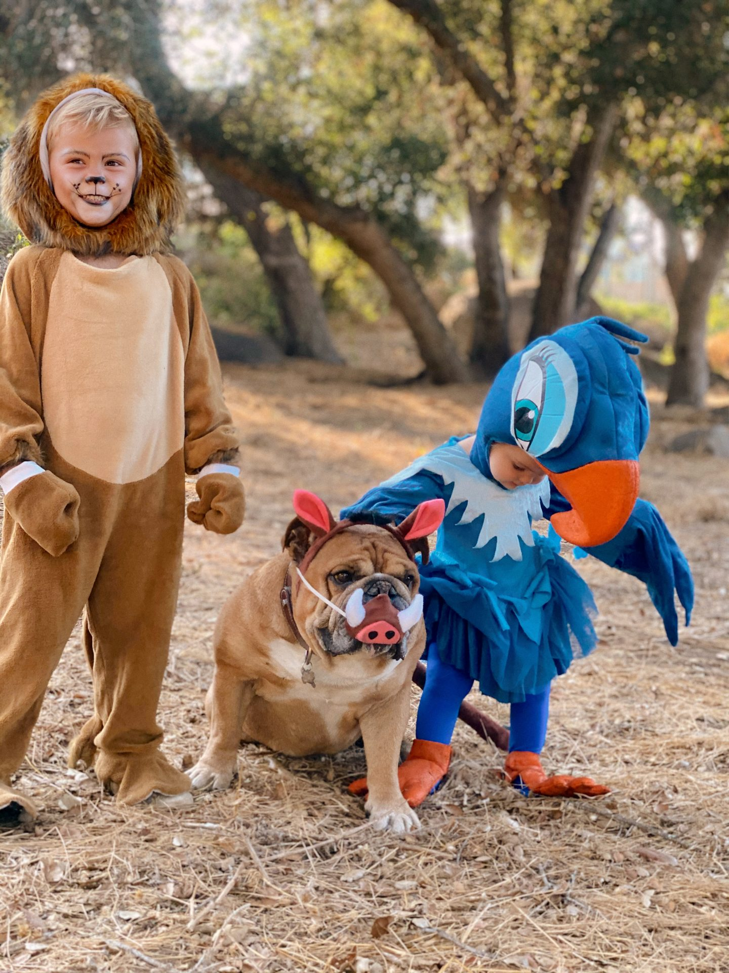 Family Halloween Costumes by popular San Diego lifestyle blog, Navy Grace: image of a family dressed up as characters from The Lion King