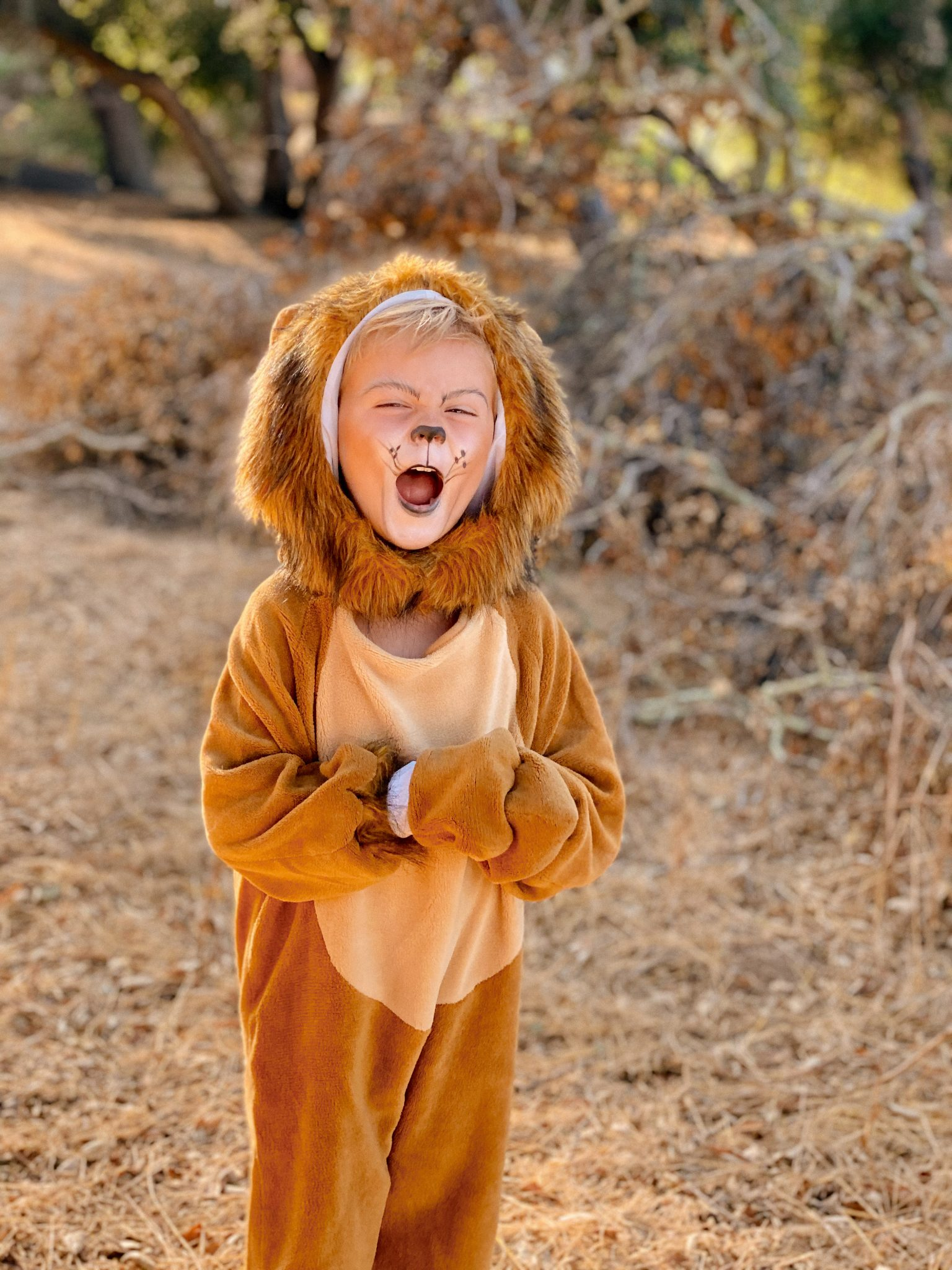 Family Halloween Costumes by popular San Diego lifestyle blog, Navy Grace: image of a boy dressed up as a lion.