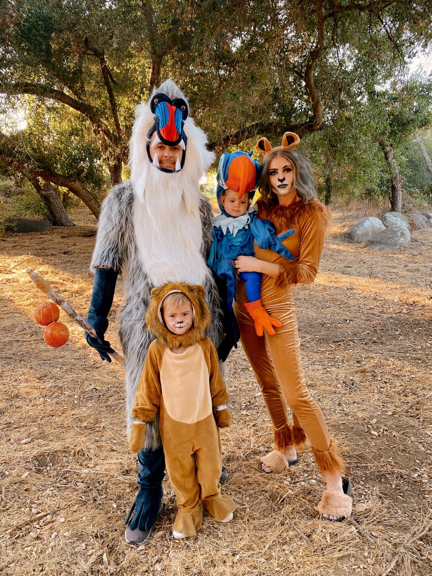 Family Halloween Costumes by popular San Diego lifestyle blog, Navy Grace: image of a family dressed up as characters from The Lion King.