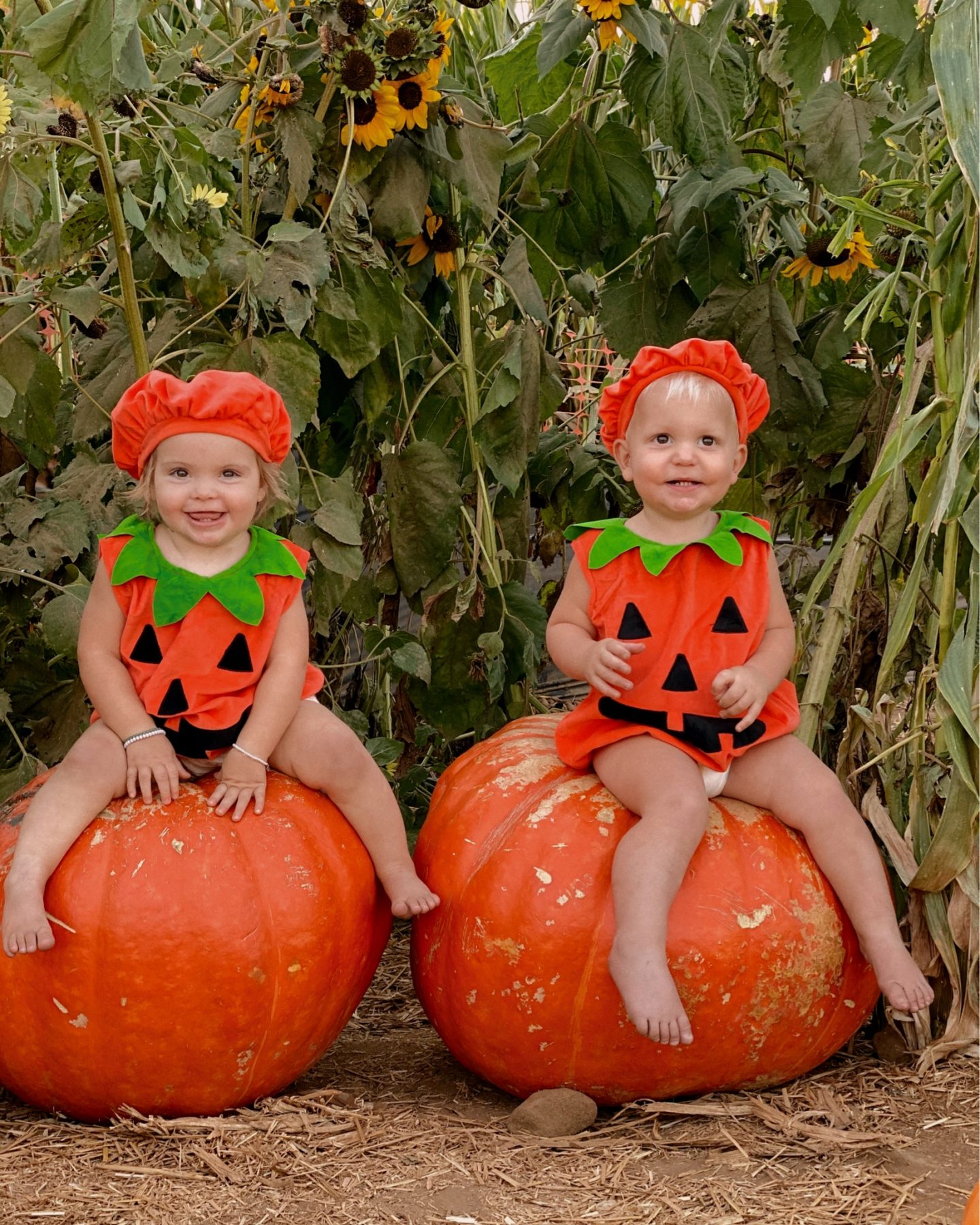 Family Halloween Costumes by popular San Diego lifestyle blog, Navy Grace: image of two young kids dressed up as pumpkins and sitting on top of two large pumpkins.
