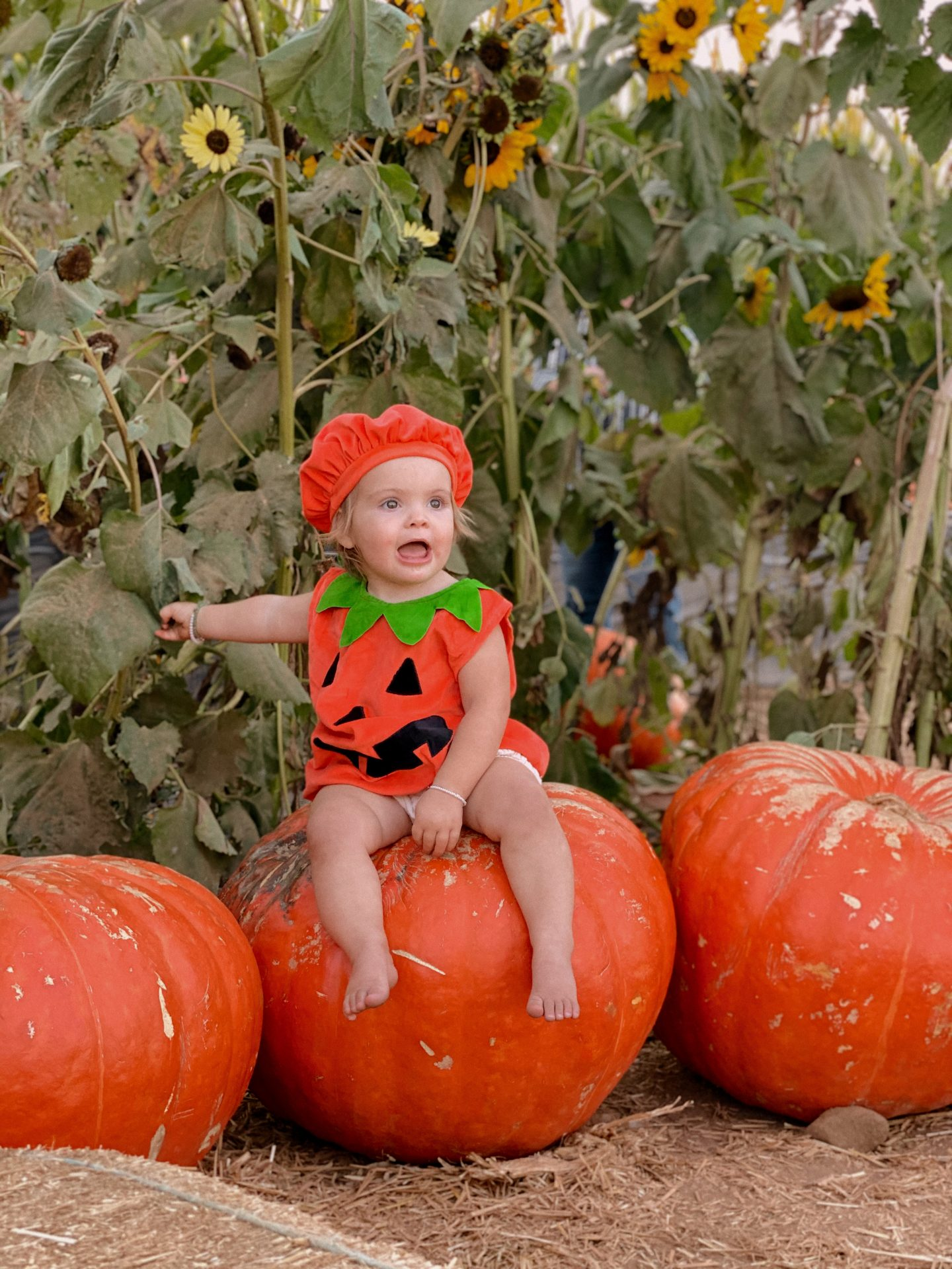 Family Halloween Costumes by popular San Diego lifestyle blog, Navy Grace: image of a kid dressed up as pumpkins and sitting on top of two large pumpkins.
