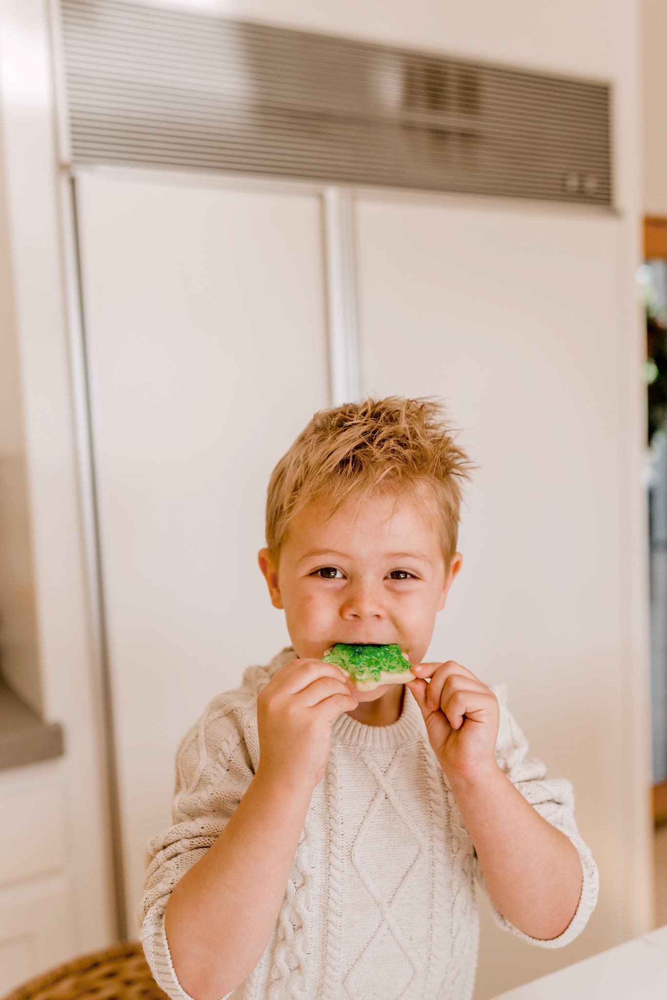 Holiday Traditions with Walmart by popular San Diego lifestyle blog, Navy Grace: image of a little boy eating a Christmas tree shaped sugar cookie with green sprinkles.