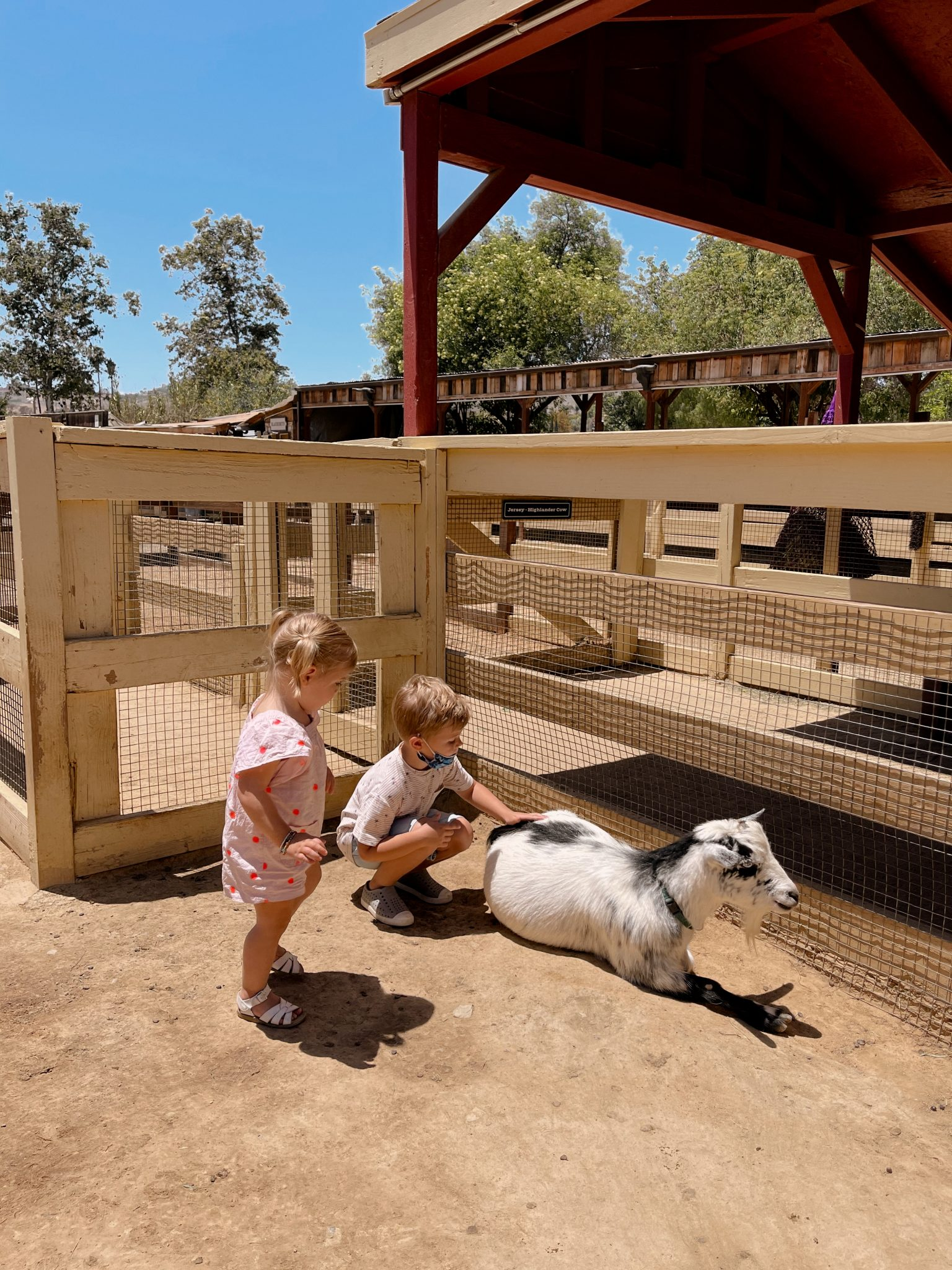 two kids petting a goat